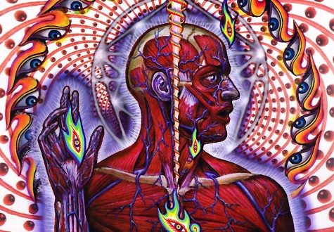 Lateralus by Tool review