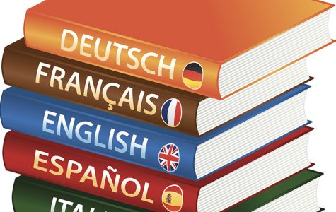 New cyber languages being offered