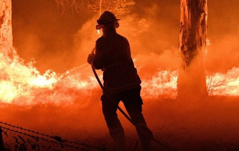Firefighter attempts to battle the flames in Australia. Source: https://www.timesofisrael.com/heavy-rains-contain-last-of-australias-wildfires/
