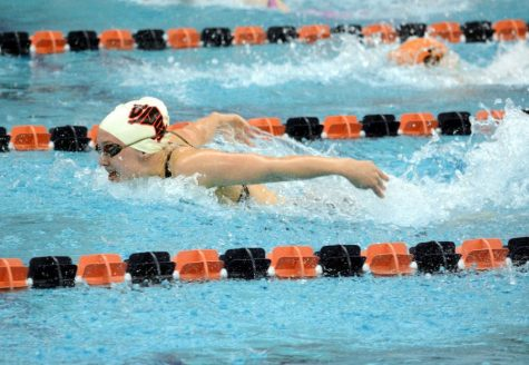Mikesells and Bietz Earn Gold at State Swim Meet