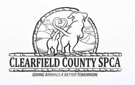 Clearfield SPCA to hold 5K to benefit their shelter