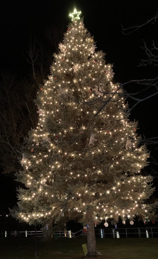 Christmas Tree Displayed At Witmer Park